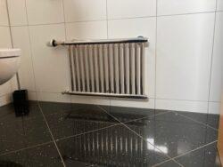 WC Heizkörper klein, aus Edelstahl
